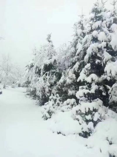 沁园春.雪(毛泽东)——大气磅礴,气吞山…
