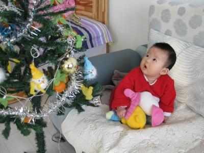 好高的圣诞树呀~~~