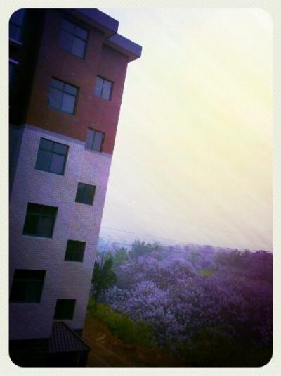 淡淡的紫…