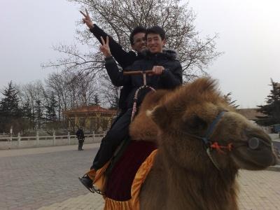 这是我和同事去河南出差,到黄河风景区边玩…